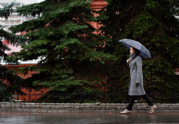 Best Walking Shoes for Rainy Weather (Top 7)