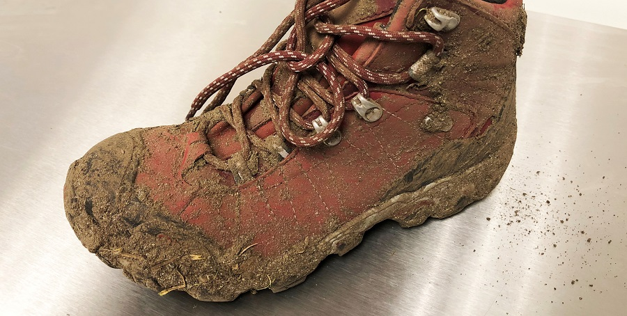 Clean Mud off the Suede Shoes